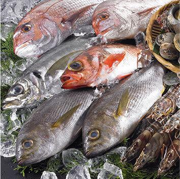 魚介 イメージ